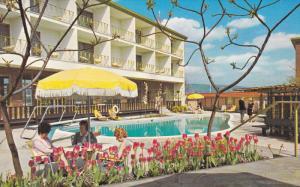 Swimming Pool, Sheraton-Vella Inn, BURNABY, British Columbia, Canada, 40-60´
