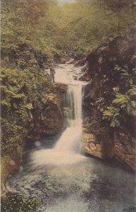 Germany Baden Baden Gerolsauer Wasserfall