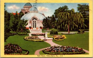 Palm House Wilkes Barre PA Park Hospital Gardens 1943 - VINTAGE - POSTCARD
