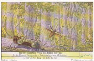 Liebig S1644 Large Insects Of The Belgian Congo No 3 Dragon Fly