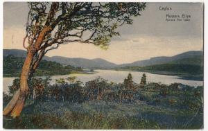 Sri Lanka / Ceylon; Nuwara Eliya, Across the Lake PPC, 1910 PMK