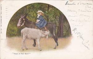 Humour Girl On Donkey With Goat Nursing Trilby, Is That Good ? 1904