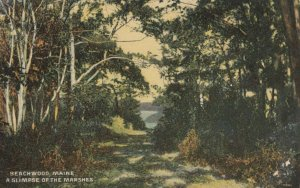 BEACHWOOD , Maine, 1900-1910s; Marshes