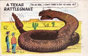 Humour Exageration Texas Rattlesnake I'm Do Big I Can't Find A Pit To Hiss In...