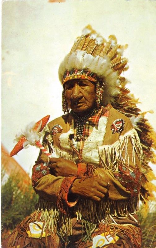 Old Indian Chief Headdress Native American Indigenous First Nations Postcard