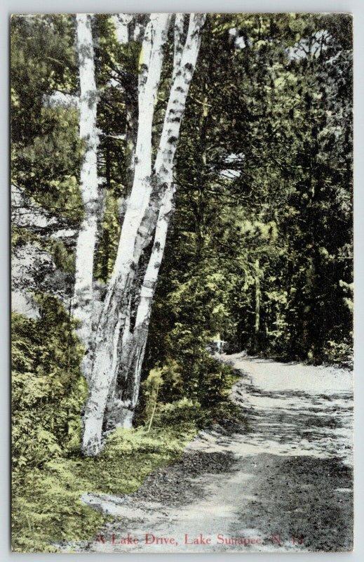 Lake Sunapee-New London NH~Birch Trees on Dirt Road~Lake Drive (Avenue)~c1910