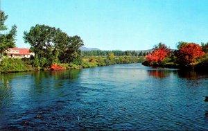 Maine Jackman Beautiful View Of Moose River