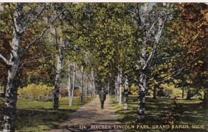 Michigan Grand Rapids Birches In Lincoln Park Curteich