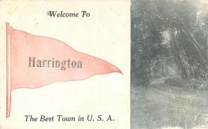 Harrington Maine~Best Town in the USA~Country Path~1912 Pennant Postcard