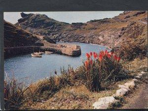 Cornwall Postcard - Boscastle Harbour    RR4860