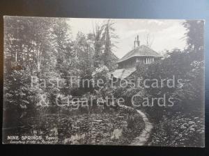 Old Tucks Somerset: Yeovil Nine Springs - St. Ives Advert Promotion postcard