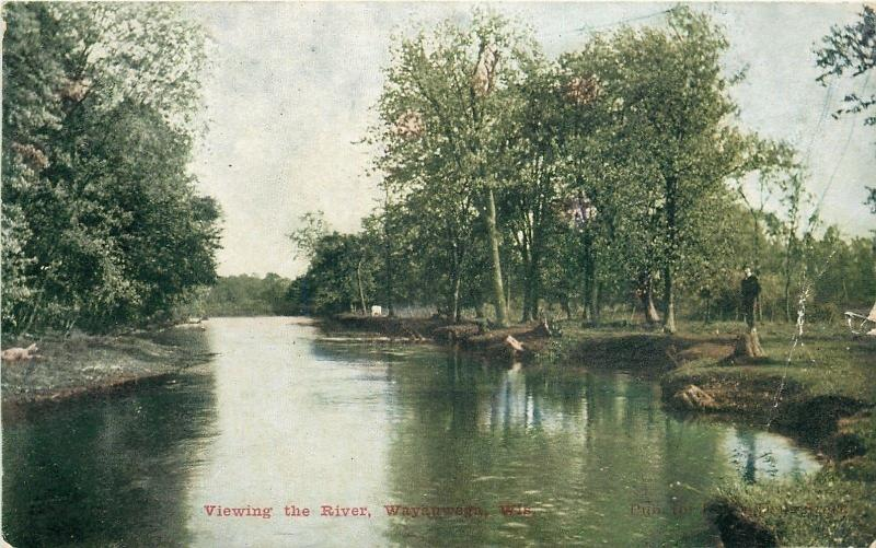 Wayauwega Wisconsin~Man on Tree Stump Viewing The River~1908 ZIM Postcard