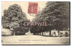Bray sur Seine Postcard Old Promenade green carpet
