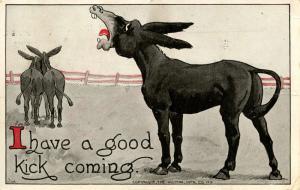 Donkey - I Have A Good Kick Coming   Artist: Wall