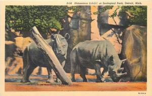 Detroit Michigan~Rhinoceros Exhibit At Zoological Park~1940s PC