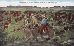 Exaggeration Rounding Up Cattle On Large Jack Rabbits In The West