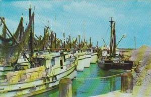 Texas Port Isabel &  Brownsville Shrimp Fleet