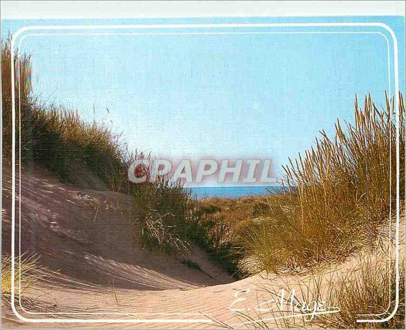 Postcard Modern Look at the Littoral of the English Channel and the North Sea