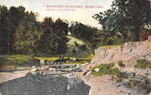 Nevada Iowa~Cattle Drink @ East Indian Creek~Horseback Rider~Postcard c1907