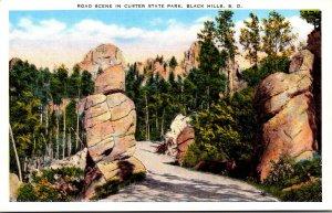 South Dakota Black Hills Road Scene In Custer State Park