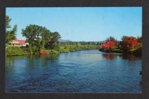 ME View Moose River JACKMAN MAINE  Postcard