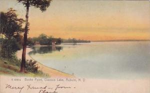 New York Auburn Buck Point Owasco Lake 1907