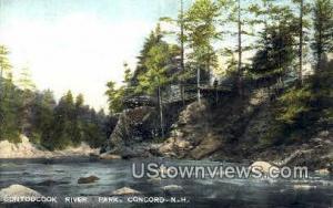 Contoocook River Park Concord NH Unused