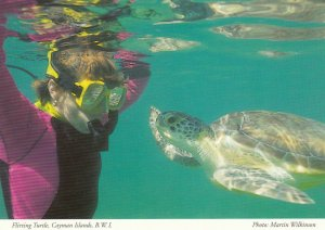 Cayman Islands , B.W.I. , 1950-70s ; Turtle