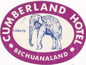 Bechuanaland Lobatsi Cumberland Hotel Purple Elephant Vintage Luggage Label 544
