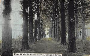 Dubuque Iowa~Pine Walk at Monastery~Pirth Path Through Trees~1912 Postcard
