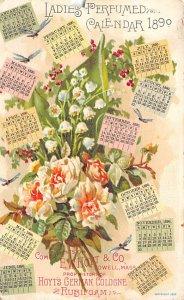 Calendar Post Card EW Hoyt & Co, 1890, Tradecard, Non Postcard Lowell, Massac...