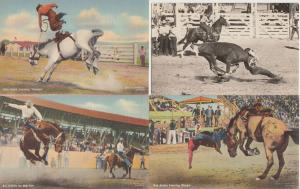 COWBOYS USA on Horses and Bulls Chevaux et Taureaux 28 CPA mostly pre-1950
