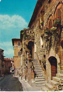 Italy Assisi pittoresca Una via con i balconi fiorti