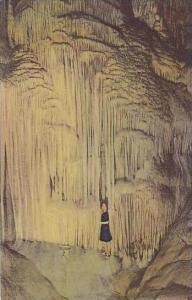 Missouri Stanton Close up of 68 Feet High Meramec Caverns Albertype