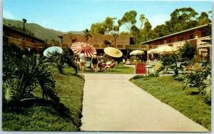 Catalina Island Avalon California Postcard THE PAVILION LODGE Pool Scene c1950s