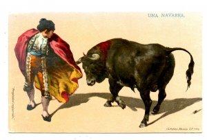 Bullfighting - A Navarrese