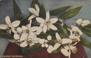 Orange Blossoms,  PU-00-10s