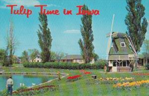 Iowa Pella tulip Time