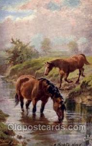 Artist Harry Payne,  Horse Postcard Postcards