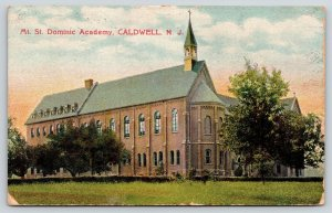 Caldwell New Jersey~Mt St Dominic All Girls Catholic Academy~High School~1909