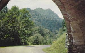Chimney Tops Seen From Loop Overpass, Highway U.S. 441, Smoky Mountains Natio...