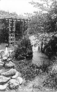 California~Pool @ Darlingtonia~Pergola~Spring Coming Out of Ground~1940s RPPC