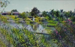Florida Winter Haven Water Park Gardens