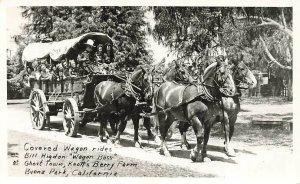 RPPC Knotts Berry Farm Covered Wagon Ride Draft Horses Team Real Photo P185