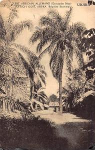 German East Africa Tanzania, Ujiji (Occupation Belge) Palm Trees