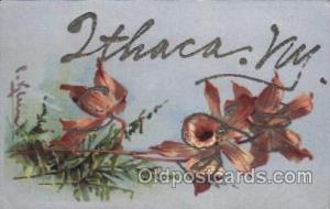 Ithaca, NY USA, Artist Signed Catherine Klein Postcard Postcards  Ithaca, New...