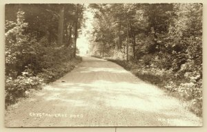 Whitehall MI~Crystal Lake Dirt Road~Uphill Climb Through Shade Trees~RPPC c1914