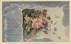 Language of Flowers , Moss-Rose , 00-10s