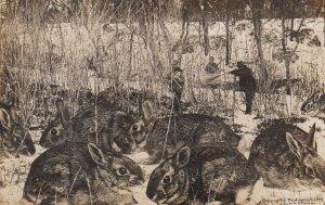 RP: Fantasy Rabbit Hunters , 1909