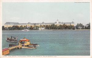 Palm Springs Florida~Royal Poinciana from Lake Worth~Ferry Boat Landing~1920s Pc